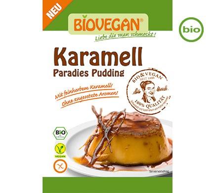biovegan-paradies-pudding-karamellgDPfNWNL4XHCz_600x600